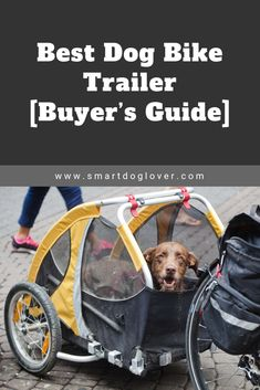 Best Dog Bike Trailer – Buyer's Guide Mountain Bike Accessories, Mountain Bike Shoes, Cool Bike Accessories, Best Dog Training Books, Dog Bike Trailer, Biking With Dog, Medium Sized Dogs, Buyers Guide, Best Dogs