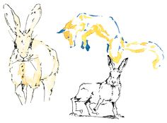 Renard & lapins - Aquarelle / Feutre noir