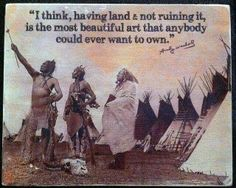 Having Land and Not Destroying It is the Most Beautiful Art that Anyone Could Ever Want to Own