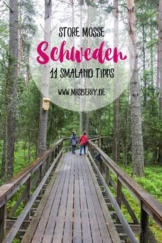 Schweden: 11 Tipps für Småland mit Kindern Holiday in Sweden – Store Mosse National Park + total 11 tips for Smaland [for a trip with and without children] Europe Destinations, Family Vacation Destinations, Holiday Destinations, Road Trip With Kids, Travel With Kids, Family Travel, Travel Blog, Travel Usa, Bora Bora