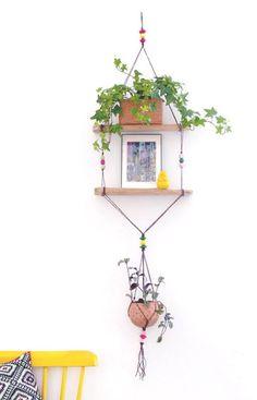 diy hanging window shelves for plants