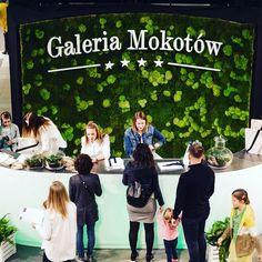 Zielona ściana z mchu Galeria Mokotów.