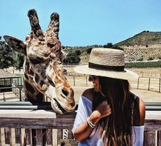 The Most Popular Travel Bucket List Ideas And Destinations Malibu Wine Safari, Malibu Wines, Safari Outfits, California Travel, Malibu California, Out Of Africa, Adventure Is Out There, The Great Outdoors, Adventure Travel