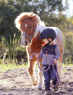 equine photography, horse photography, pony, Shetland pony, children and ponies Male Horse, Pony Horse, Horse Tack, Baby Pony, Mini Pony, Horse Show Clothes, Barrel Racing Horses, Cute Ponies, Pony Rides