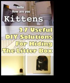 27 Useful DIY Solutions For Hiding The Litter Box - Some of these I would not do personally, but they are cute anyway.