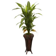 57 inch dracaena w/stand silk plant (real touch)