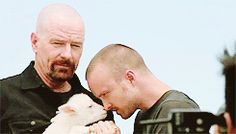 Here's Aaron playing with a baby lamb: | 35 Reasons Why Aaron Paul Should Be Your Favorite Actor On Television