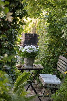 Garden Arbor, Garden Planters, Garden Landscaping, Love Garden, Dream Garden, Back Gardens, Outdoor Gardens, Lily Wallpaper, Decoration Gris