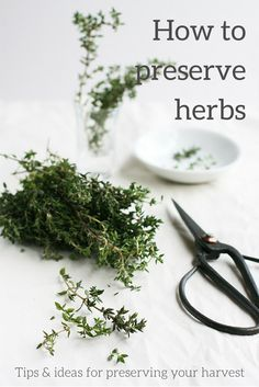 Enjoy homegrown herbs all year round with these easy tips and ideas for preserving your harvest.