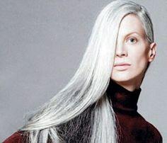 Long gray hair. silverfoxes