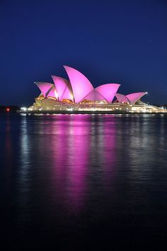 9f242428bf Pink Opera House. Breast Cancer SurvivorBreast Cancer AwarenessGo ...