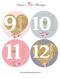 Gold Glitter baby stickers Pink Grey Month by AnniesChicBowtique