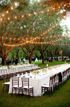 It is summer time and we LOVE this outdoor wedding design! The canopy tree lights would be magical at night!