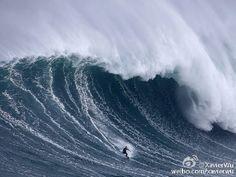 2015年11月03日-葡萄牙纳扎雷,冲浪爱好者在马夫拉北海滩冲浪。自从夏威夷人Garrett McNamara于2011年再次挑战最大浪潮获得世界纪录后,马夫拉北海滩就成为了世界各地冲浪者的圣地。摄影师:Rafael Marchante (分享自@iWeekly周末画报)