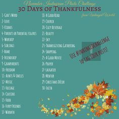 30 Days of Thankfulness, November Instagram Photo Challenge!
