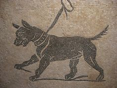 Mosaic of a tethered dog, Roman, 1-2 century