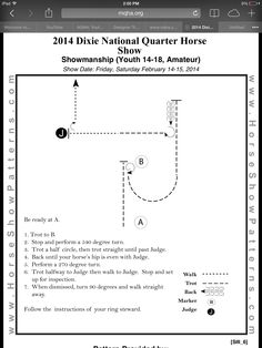 Showmanship Showmanship - Art Of Equitation Horse Riding Games, Horse Riding Tips, Horses And Dogs, Show Horses, Horsemanship Patterns, Ranch Riding, Hunt Seat, Horse Arena, Horse Exercises