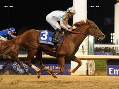 Drosselmeyer crosses the finish line in the 2011 Breeders' Cup Classic