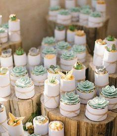 Succulent cupcakes?!