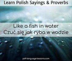 old polish sayings