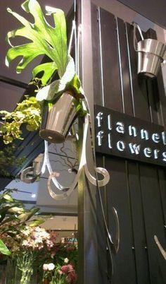 Steel leaves from Flannel Flowers, Hong Kong