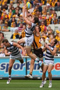 MELBOURNE, AUSTRALIA - APRIL 01: Mark Blicavs of the Cats attempts to mark during the round one AFL match between the Hawthorn Hawks and the Geelong Cats at the Melbourne Cricket Ground on April 1, 2013 in Melbourne, Australia. (Photo by Quinn Rooney/Getty Images)  Read more here: http://www.charlotteobserver.com/2013/04/01/3954210/the-daily-edit-040213.html?spill=1#storylink=cpy