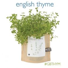 Potting Shed Creations - Thyme Garden-in-a-bag