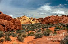 Valley Of Fire  :at http://robert-bales.artistwebsites.com/