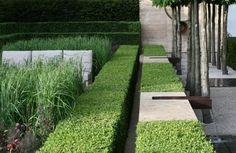 Luciano Giubbilei's Laurent-Perrier Garden @ the Chelsea Flower Show
