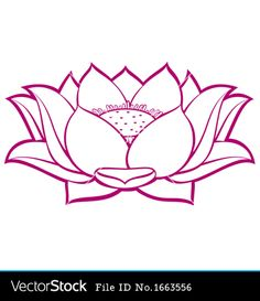 lotus flower images - Google Search