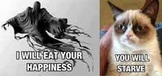 Funny Animal Pictures - Grumpy Cat - Ideas of Grumpy Cat - Dementor vs. Grumpy Cat More The post Funny Animal Pictures appeared first on Cat Gig. Haha Funny, Funny Cute, Funny Memes, Funny Pics, Funny Stuff, Memes Humor, Funny Share, Hilarious Jokes, Nerd Humor