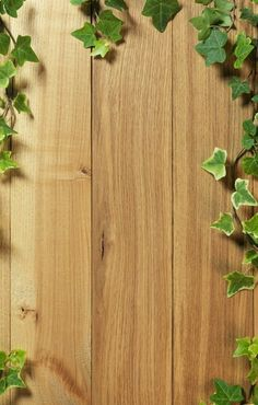 jaro, léto Wallpaper Nature Flowers, Flower Background Wallpaper, Wood Background, Background Pictures, Flower Backgrounds, Photo Backgrounds, Wallpaper Backgrounds, Wallpaper Shelves, Wood Wallpaper