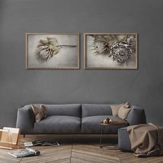 Everlasting - prints in Kiaat box frames - Landscape Set 1 by Natascha van Niekerk Fine Art Photography Artistic Photography, Abstract Photography, Fine Art Photography, Protea Art, Large Art Prints, Custom Wallpaper, Box Frames, Fine Art Paper, Decorating Your Home