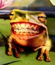 funny dental humor - Need braces? Rosemarie Buen DMD can help with straightening your teeth! Call Signature Smiles Dental Care in Oak Park, IL today. Go from being a frog to a prince in just 12-18 months!
