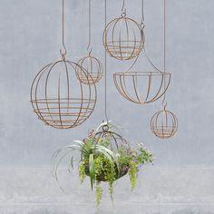 Sphere Hanging Basket in Gardening TRENDING Fresh Finds at Terrain