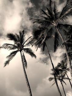 Amazing black and white beach photography Photography Guide, Beach Photography, Pretty Pictures, Cool Photos, Night Of The Iguana, Black And White Beach, Surfing Pictures, Black And White Aesthetic, Take Better Photos