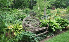 Garden seating in the Primozich garden (photo credit: Jean Potuchek) Garden Seating, Garden Photos, Outdoor Furniture, Outdoor Decor, Photo Credit, Garden Ideas, Bench, Google Search, Tips