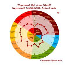 Weyermann® Malt Aroma Wheel® Caramünch® - farina di malto
