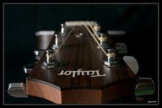Taylor 214ce acoustic guitar