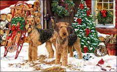 Airedale Terrier - Christmas Welcome  by Margaret Sweeney