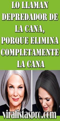 Easy Hair Mask Recipe You Can Make At Home darbysmart beautytips beautyhacks Beauty Tips For Face, Hair Beauty, Face Care, Body Care, Beauty Care, Beauty Hacks, Eyebrow Stamp, Smoked Eyes, Waterproof Eyebrow