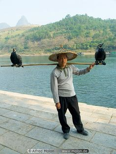 01 Fisherman with cormorants,  Li river, Guilin, China