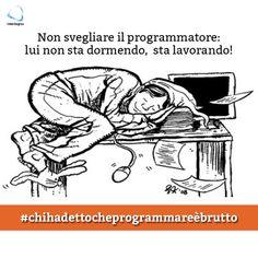 Non svegliate il programmatore che (forse!) dorme...  #chihadettocheprogrammareèbrutto