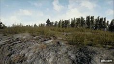 Death by pan