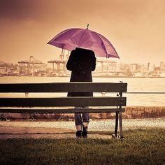 Purple umbrella and a park bench ~ Cuba Gallery