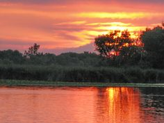 Horicon Marsh in Dodge County Wisconsin at Sunset. Jack spent Saturdays fishing with his grandfather not far from here.