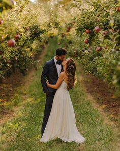 Elegant orchard wedding in Canada | Image by Mathias Fast