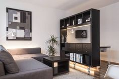 10 Tips on How to Live large in a Small Space of 24m² - Freshome