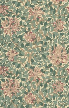 Honeysuckle Green/Coral/Pink tapet från William Morris & Co - Tapetorama William Morris Tapet, William Morris Wallpaper, Morris Wallpapers, Design Textile, Design Art, Molduras Vintage, Autumn Nature, Coral Pink, Designer Pillow