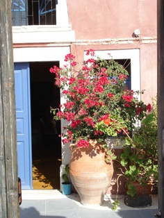 Front entry in Santorini. - the LARGE potted plant in front really makes the entrance